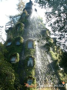 Montaña mágica lodge- Huilo Huilo, Chile. When I have money and get back to Chile for Patagonia, this will be hit up too.