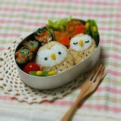 Owl onigiri bento