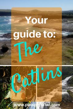 The Catlins: Wild, remote, rugged, and beautiful. I am lucky enough to live in one of the most beautiful countries in the world: New Zealand. So I wanted to share with you all a beautiful part of New Zealand that is only an hour's drive away from my town.