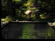 Bill Viola - The Reflecting Pool