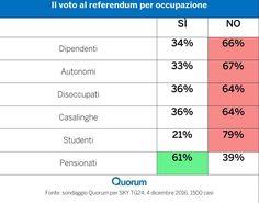 Referendum Costituzionale - il voto per occupazione