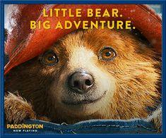 Paddington Bear, Brown Bear, Adventure, Kids, Books, Movies, Young Children, Boys, Libros