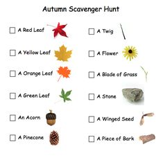 Autumn Scavenger Hunt For Toddlers and Pre-Schoolers