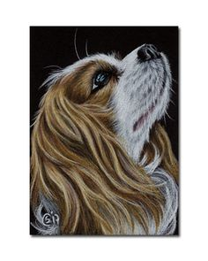 SPANIEL 1 King Charles dog puppy painting Sandrine Curtiss ORIGINAL Art ACEO #Realism