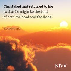 NIV Verse of the Day: Romans 14:9