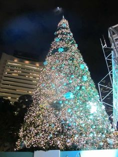 Tiffany & Co. Christmas Tree in Hong Kong, 2012