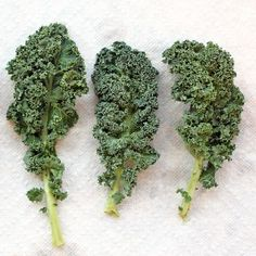 Sauteed Kale with Toasted Pine Nuts
