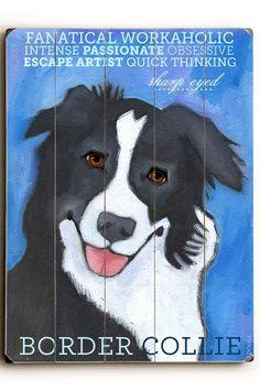 Border Collie by Pet Art Shop on @HauteLook