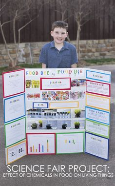 My 10 year old did the Science Experiement for school. His teacher a classmates were surprised to learn the harmful effects of artificial chemicals in food. I myself was surprised at how badly the aspartame plant fared. Plant Science Fair Projects, Science Fair Board, Science Fair Experiments, Easy Science, Science For Kids, Winning Science Fair Projects, Stem Projects, Food Science, Life Science
