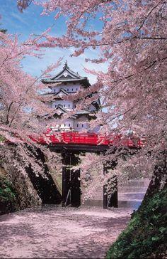Red bridge to Hirosaki Castle in spring, Japan.