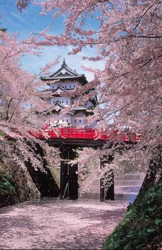 Red bridge to Hirosaki Castle in spring, Japan.