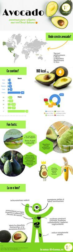 Infografic avocado - para aligator cu peste 20 de vitamine si minerale