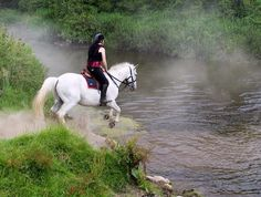 Cross country riding at Flowerhill Equestrian Centre, Portumna Ireland