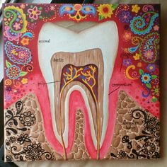 Beautiful dental anatomy art
