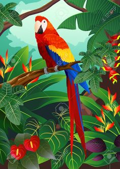 Illustration of Macaw Bird vector art, clipart and stock vectors. Art Tropical, Tropical Birds, Colorful Birds, Jungle Art, Bird Drawings, Bird Art, Beautiful Birds, Painting Inspiration, Watercolor Paintings