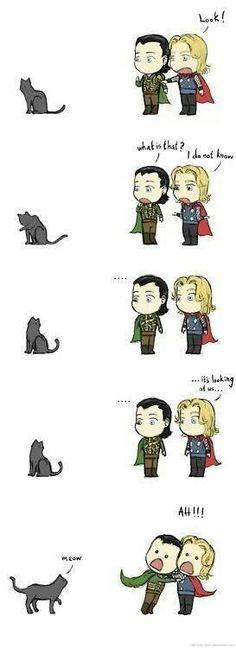 hahahhaha lol