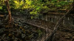 The Temple in Cambodia 🇰🇭 Ta Prohm, Meeting Your Soulmate, Meeting New People, Vacation Destinations, Cambodia, Life Is Good, Temple, Vineyard, Country Roads