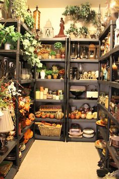 Savvy Seasons by Liz: Welcome to Savvy Seasons Home Store - where she stores all her decor items!! Oh my!!