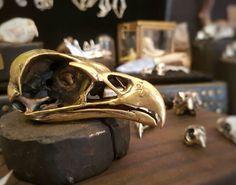 Re tailed kite #graskull #skull #bird #birdskull #oddity #cast #curio #shamanic #gothic #goth #wiccan #jewelry #jewellery (view on Instagram http://ift.tt/2ni0rL1)