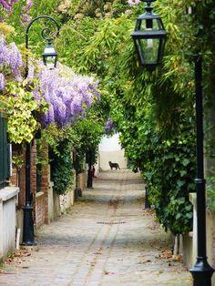 Passy district, Villa Dietz-Monnin, Paris XVI, France where Berthe lived most of her life. Paris Travel, France Travel, The Places Youll Go, Places To See, Beautiful World, Beautiful Places, Beautiful Homes, Paris Arrondissement, I Love Paris