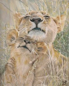 Lioness and cub by AnnemiekedW.deviantart.com on @deviantART Prismacolor premiers on draft film - A4 sized drawing Animals And Pets, Baby Animals, Cute Animals, Beautiful Cats, Animals Beautiful, Big Cats, Cats And Kittens, Gato Grande, Tier Fotos