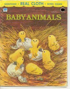 BABY CHICS SO CIUT