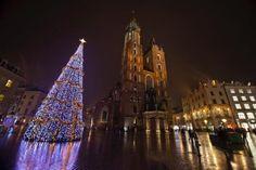 fot. Dorota Kamińska #christmastree #citysquare