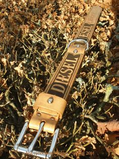 Jeweleeches Vivian Hebing handmade leather dog collar for a boxer named Diesel