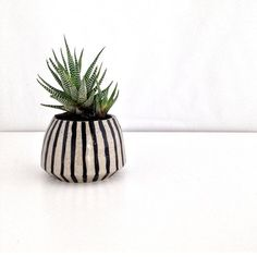 """75 Likes, 2 Comments - P U B L I C H O L I D A Y (@itsapublicholiday) on Instagram: """"Beautiful shot of our striped planter by rad stockist @antlerandmoss. More patterned planters will…"""""""