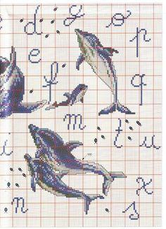 Punto croce delfini