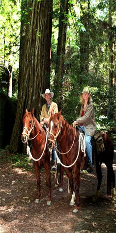 Horseback riding - Armstrong Woods Pack Station, Guerneville, CA