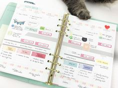 Big Picture Classes   Plan It Out   06: Intro & Planner Basics