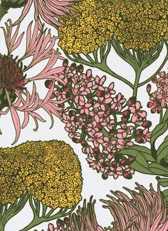 Abigail Borg: Hello Yarrow (Natu) Wallpaper