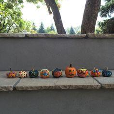 'Tis the season for fall