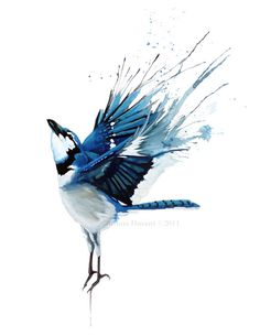 Joshua-Durant- gouache, Blue Jay Set Me Freet; Painting Reproduction Print 8.5 x 11 via Etsy