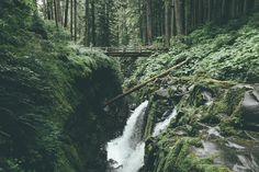 Olympic National Park by Dylan Furst - Photo 123285717 - 500px