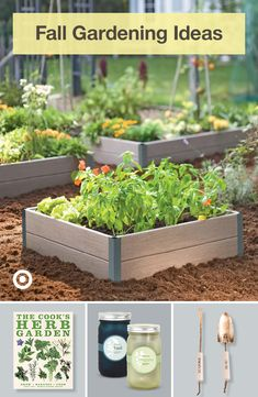 Garden Yard Ideas, Lawn And Garden, Garden Projects, Garden Landscaping, Garden Art, Fall Vegetables, Growing Vegetables, Container Gardening, Succulent Containers
