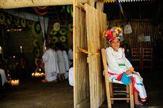 El gobernador Javier Duarte de Ochoa acude a la gran celebración del Festival Cultural Veracruzano de Cumbre Tajín, que tiene como objetivo preservar y difundir la riqueza cultural y arqueológica de la Ciudad Sagrada de El Tajín.