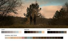 Request Week #10 - browsersisterThe Hunt, 2012Cinematography: Charlotte Bruus Christensen