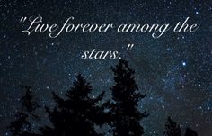 """Let the world honor you, my Huntress,"" Artemis said. ""Live forever in the stars."" -The Titans Curse"