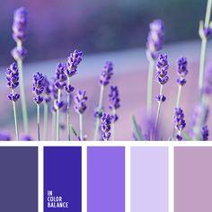 azul claro, azul oscuro, azul ultramar, color lila, de lavanda, elección del color, morado, paleta de colores, rosado, rosado polvoriento, selección de colores, tonos violetas, violeta claro.