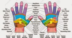 Reflexology is the application of appropriate pressure to specific points and areas on the feet, hands or ears. Reflexologists do believe that these areas and reflex points correspond to different body organs and systems and by