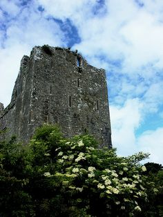 Leamanegh Castle, Ireland. Leamanegh is a ruined castle located in the townland Leamaneh North, in the region known as The Burren in County Clare, Ireland. It consists of a 15th-century tower house and a 17th-century mansion. (V)