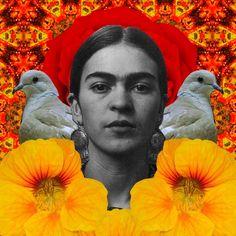 frida collage   unknown artist
