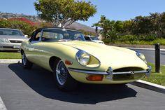 Street Spot: A Jaguar Waiting to Pounce