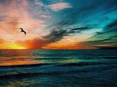 I love my beach life !! #Florida #SouthWalton #GulfofMexico #30A