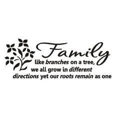 Family like branches on a tree Vinyl wall lettering stickers quotes and sayings home art decor decal