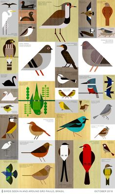 Scott Rebhuhn - Sao Paulo Birds - Abbildung, Best Picture For bird design For Your TasteYou are looking for something, and it is going to tell you exactly what you are looking for, and you didn't find that pi Bird Graphic, Graphic Art, Vogel Illustration, Vogel Quilt, Charley Harper, Bird Quilt, Bird Drawings, Bird Art, Folk Art