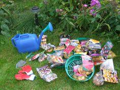 Вот и настало время сажать луковичные цветы.