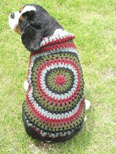 DSCF0799 - Dog sweater